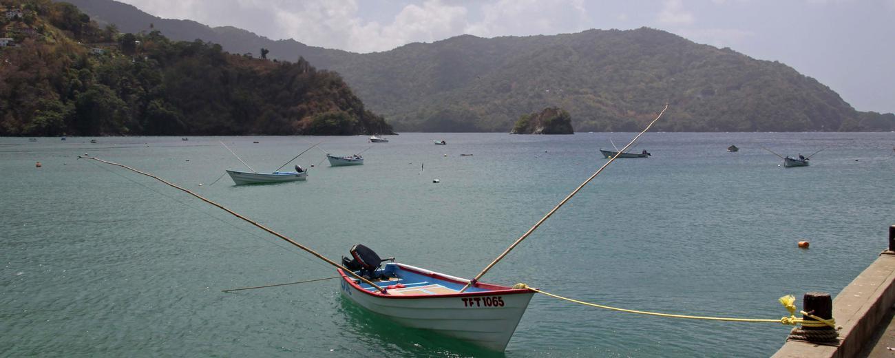 Trinidad Tobago Caribbean Weather Forecast Climate